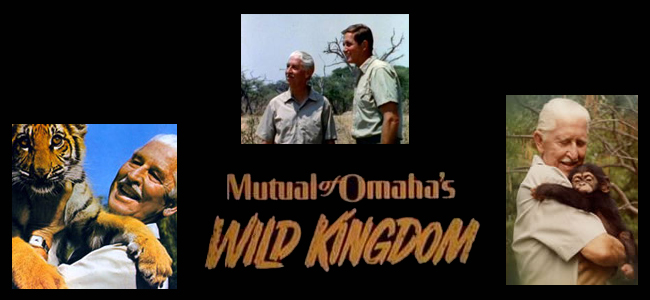 mutual of omaha wild kingdom